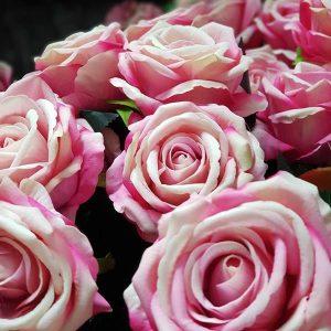 Fake roses