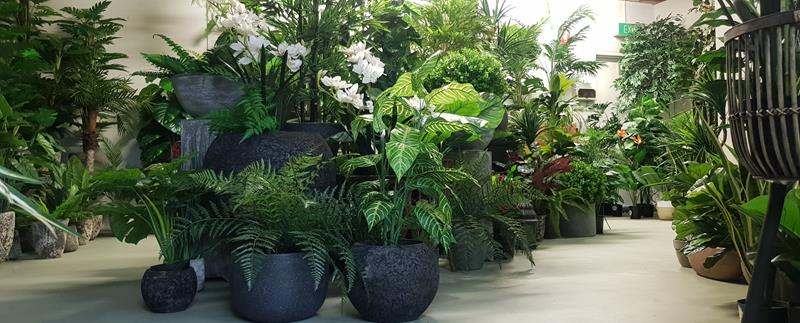 Plastic plants melbourne