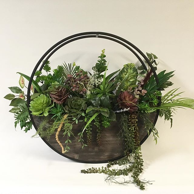 Round planter with hanging suculents