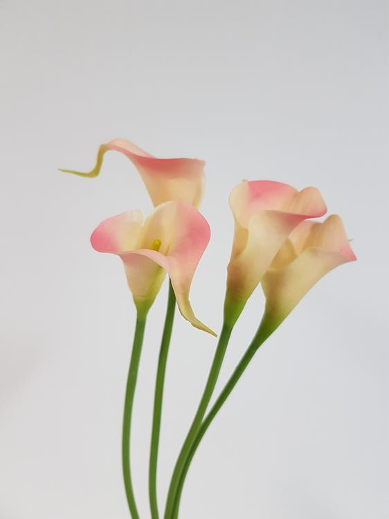 artificial calla lily online purchase