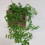 purchase Artificial Philodendron bush