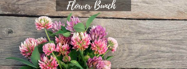 Flower Bunches